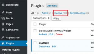 Delete unnecessary plugin